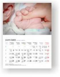 Pāršķiramais sienas kalendārs ar 12 lapām + vāks, metāla spirāle A4 (21X30cm)