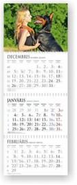 Sekciju sienas kalendārs ar spirāli (noplēšamas mēnešu lapas) 297x840mm, 1+3 daļas